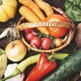 野菜と食物繊維